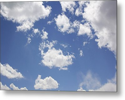 Reach For The Sky Metal Print by Mike McGlothlen