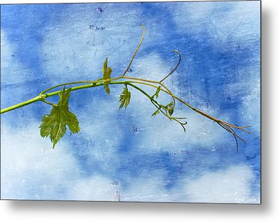 Reaching Out Metal Print by Heidi Smith