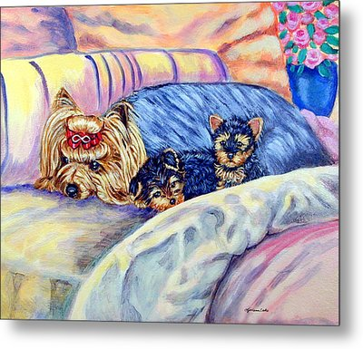 Ready For Bed - Yorkshire Terrier Metal Print by Lyn Cook