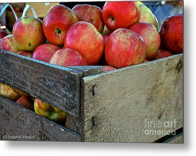 Ready To Eat Metal Print by Susan Herber