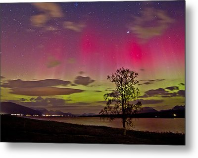 Red And Green Metal Print by Frank Olsen
