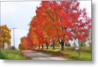 Red And Yellow Mercer Pa Metal Print by Tom Bush IV