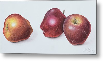 Red Apples Metal Print by Margaret Ann Eden