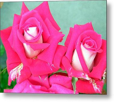Metal Print featuring the digital art Red Carnations by Vicky Tarcau