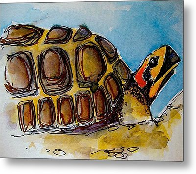 Red Foot Tortoise Metal Print by Richard Greene
