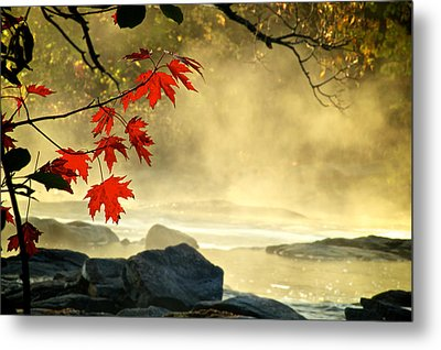Red Maple Leafs In Fog Metal Print by Andre Faubert