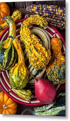Red Pear And Gourds Metal Print by Garry Gay
