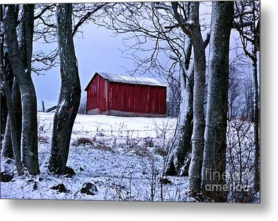 Red Shed In Winter Metal Print by Christian Mattison