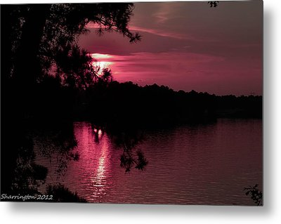 Red Sky At Night Metal Print by Shannon Harrington