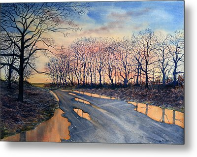 Red Sky On The Road From Sledmere Metal Print