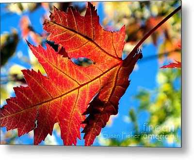 Metal Print featuring the painting Red by Susan Fisher