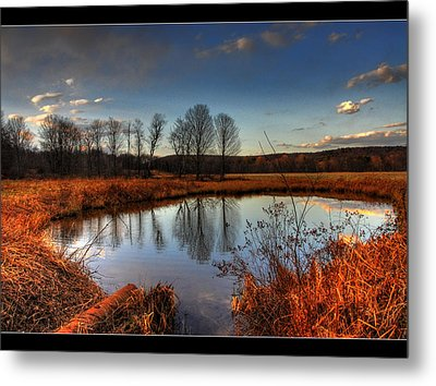Reflect Upon Metal Print by Chris Hartman Price