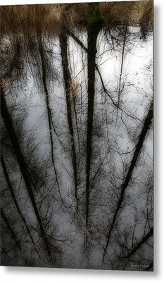 Reflecting On A Winter Day Metal Print by Winston Rockwell