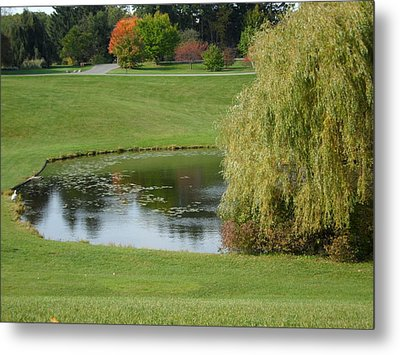 Reflecting Pond Metal Print by Val Oconnor