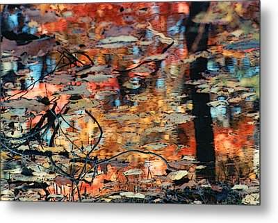 Reflection Metal Print by Barbara Middleton