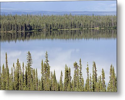 Reflection In Willow Lake Near Copper Metal Print by Rich Reid
