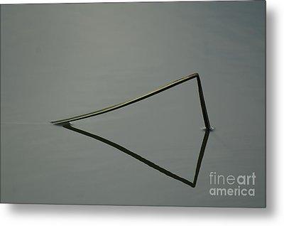 Reflection Metal Print by Odon Czintos