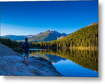 Reflections Metal Print by Daniel Chen