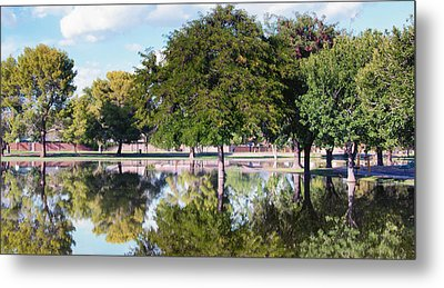 Reflections Metal Print by Diane Wood