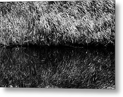 Reflections Metal Print by Fabrizio Troiani