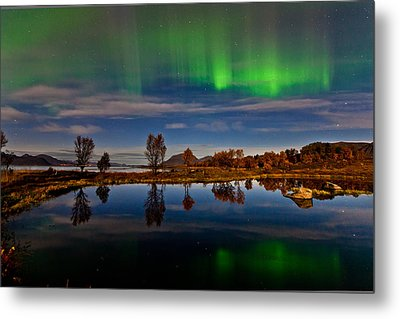 Reflections In The Pond Metal Print by Frank Olsen