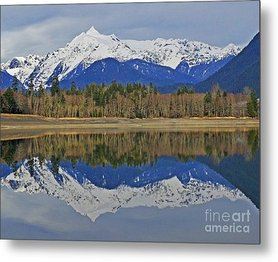 Metal Print featuring the photograph Reflections by Jack Moskovita