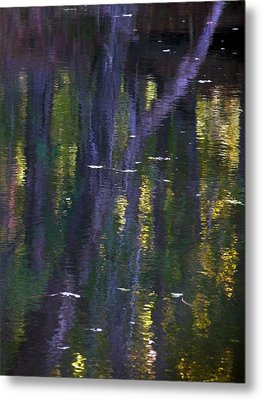 Reflections Of Monet Metal Print by Terry Eve Tanner