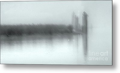 Reflections Through The Fog Metal Print