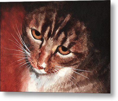Reflective Kitty Metal Print by Tricia Griffith