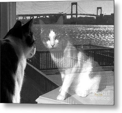 Reggie Reflected Metal Print by Dale   Ford