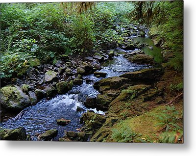 Rejuvenation Metal Print