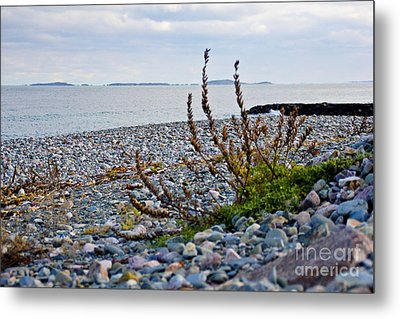 Relax Metal Print by Extrospection Art