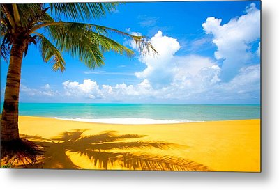 Relaxing On The Beach Metal Print by Robert Anderson