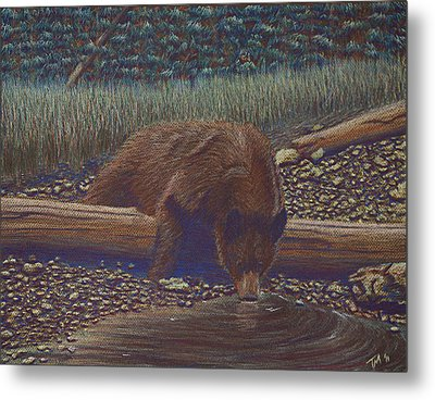 Relaxing With A Drink Metal Print by Thomas Maynard