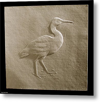 Relief Bird On Paper Metal Print