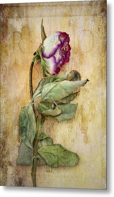 Remembrance Metal Print by Marion Galt