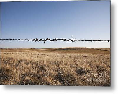 Repaired Strand Of Barbed Wire Metal Print by Jetta Productions, Inc