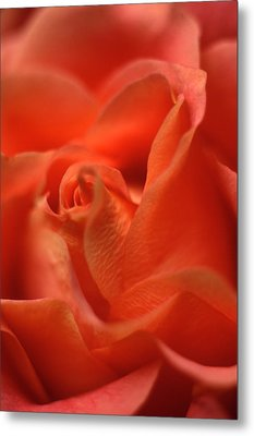 Repose Metal Print by Kathy Yates