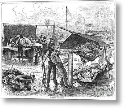 Republican Barbecue, 1876 Metal Print by Granger