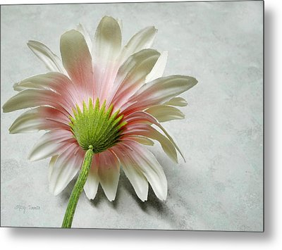 Metal Print featuring the photograph Reserved by Mary Timman