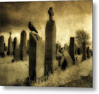 Rest Blackbird Metal Print by Gothicrow Images
