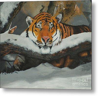 Resting Tiger Metal Print by Thomas Luca
