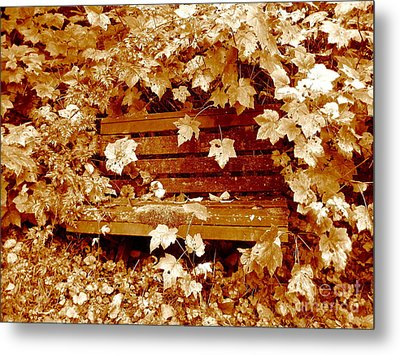 Metal Print featuring the photograph Resting Too by Kathy Bassett