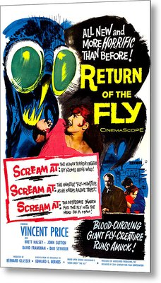 Return Of The Fly, Top Right Danielle Metal Print by Everett