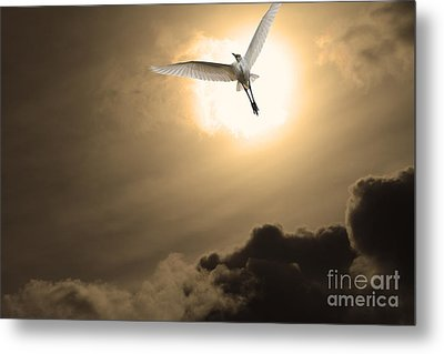 Return To Eternity . Gold Cut Metal Print by Wingsdomain Art and Photography