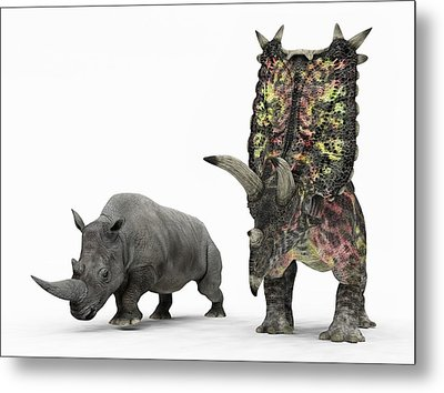 Rhino And Pentaceratops Dinosaur Metal Print by Walter Myers