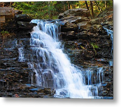 Ricketts Glen Waterfall 4063  Metal Print by David Dehner