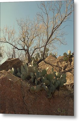 Metal Print featuring the photograph Ridgeline by Louis Nugent