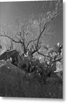 Metal Print featuring the photograph Ridgeline Two by Louis Nugent