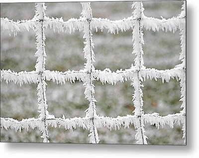 Rime Covered Fence Metal Print